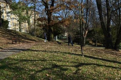 Nadace Zámecký park nepodpoří, proměna ale nekončí