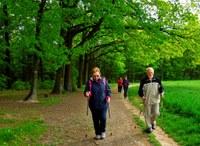 Senioři si zlepšují fyzickou kondici
