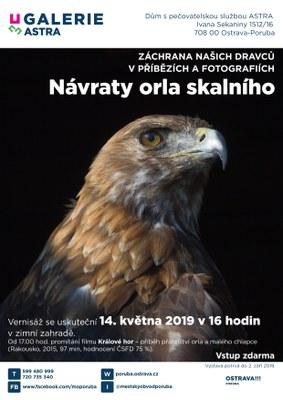 V Galerii Astra se seznámíte s projektem na záchranu orla skalního