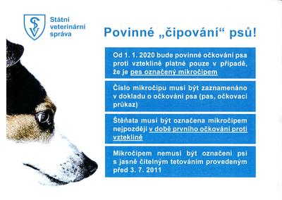 Od příštího roku bude čipování psů povinné